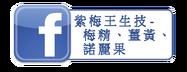 紫梅王生技,梅精,薑黃,諾麗果